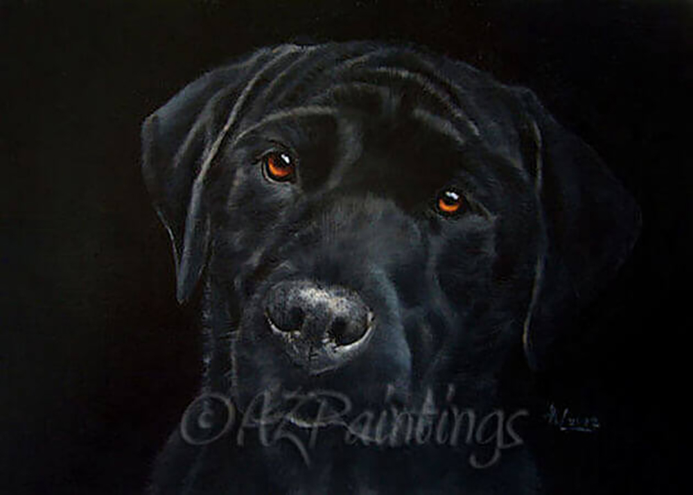 Black On Black - an oil painting of a black labrador retriever