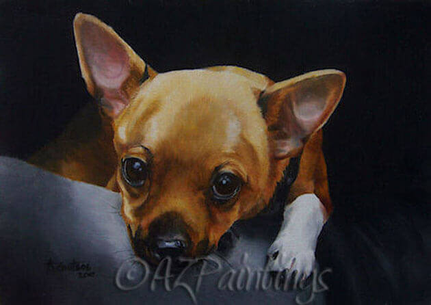 Safe and Sound - an oil painting of a little chihuahua