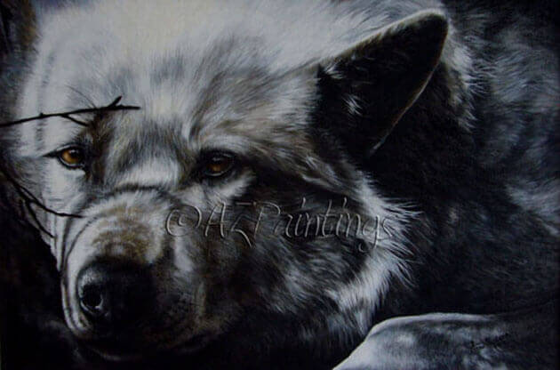 An original oil painting of an Arctic Wolf