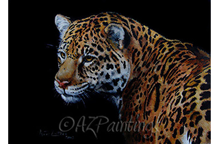 A Rare Beauty - an oil painting of a Jaguar