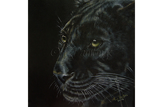 Black As Night  - an original oil painting of a panther