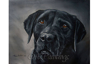 An oil painting head study of a black Beautylabrador retriever