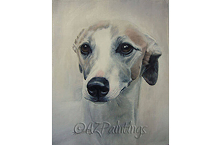 Oil painting head study of a whippet