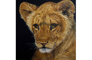 Heir Apparent - an oil painting of a young lion